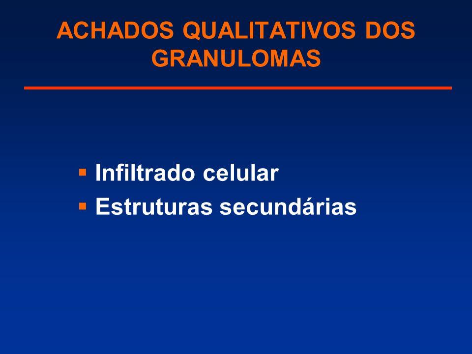 ACHADOS QUALITATIVOS DOS GRANULOMAS