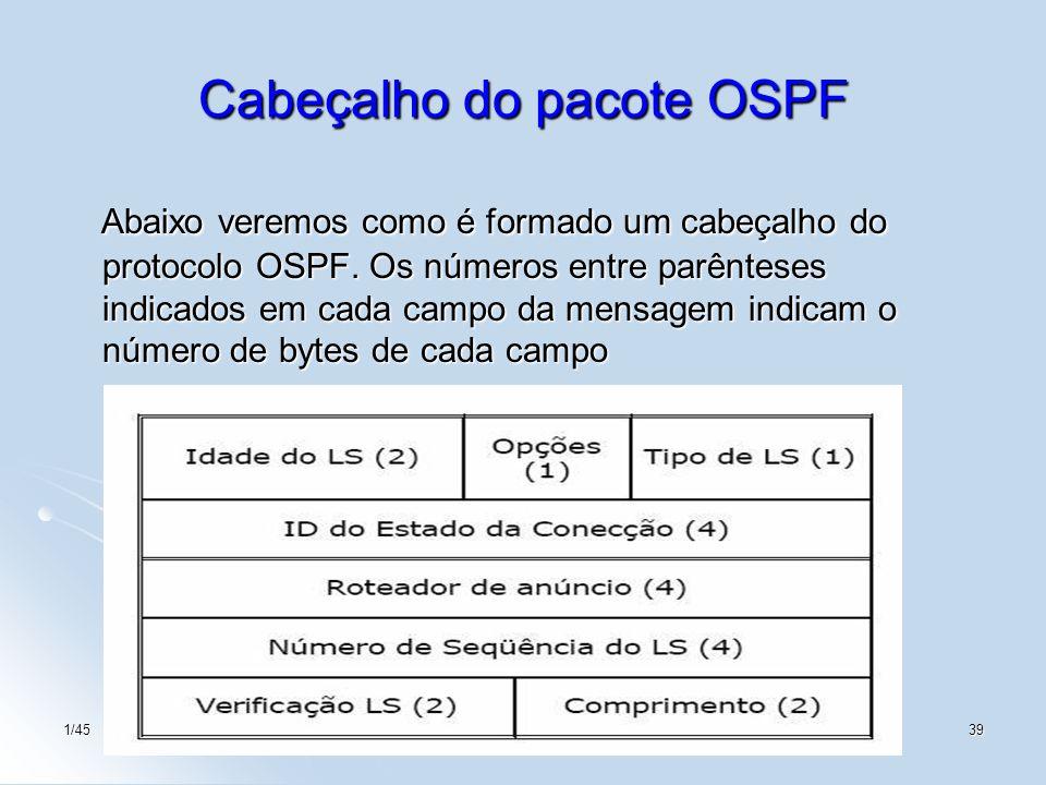 Cabeçalho do pacote OSPF