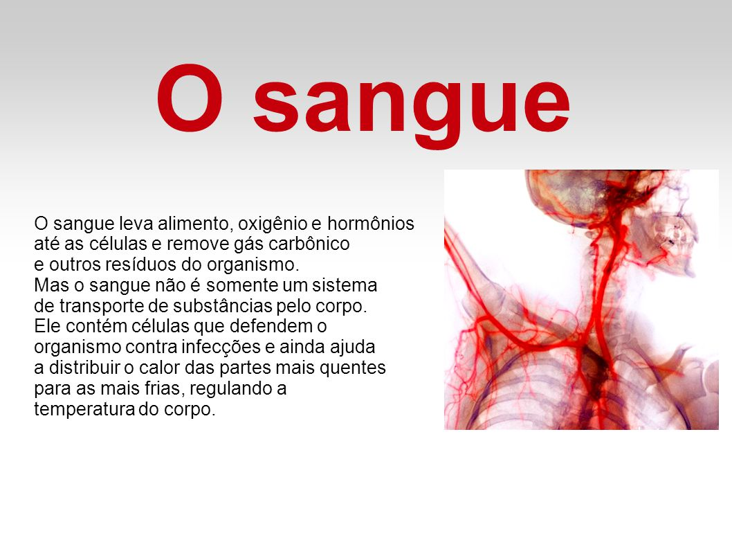 O sangue O sangue leva alimento, oxigênio e hormônios
