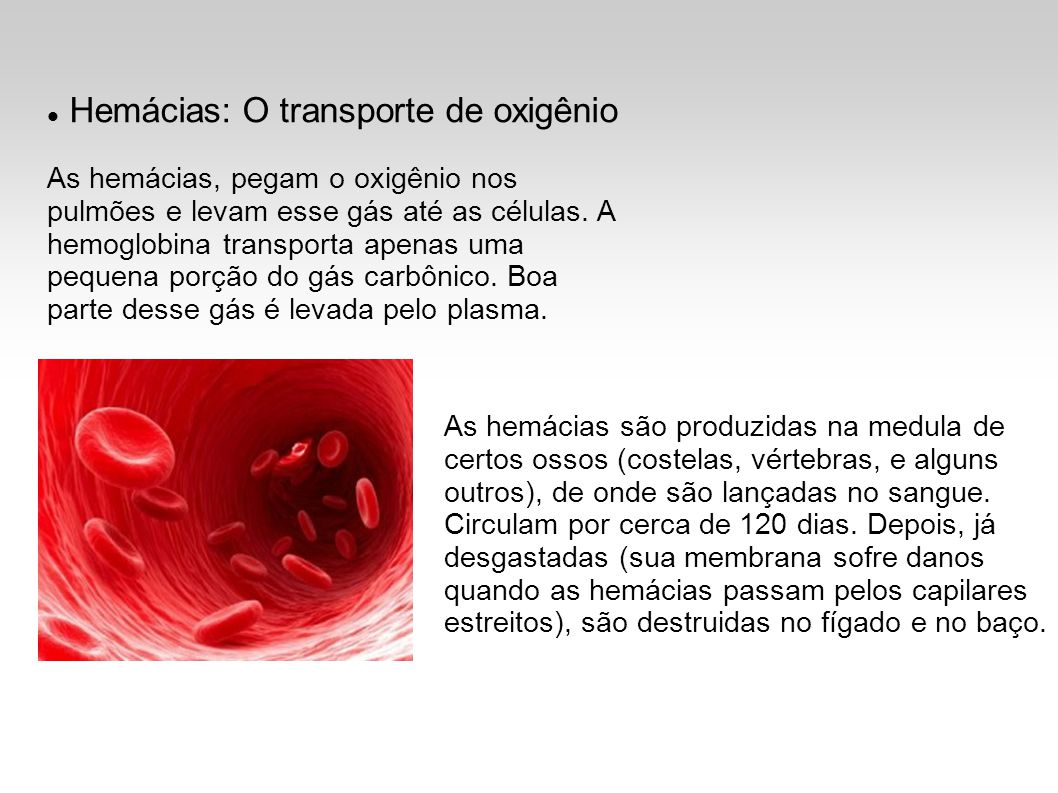 Hemácias: O transporte de oxigênio