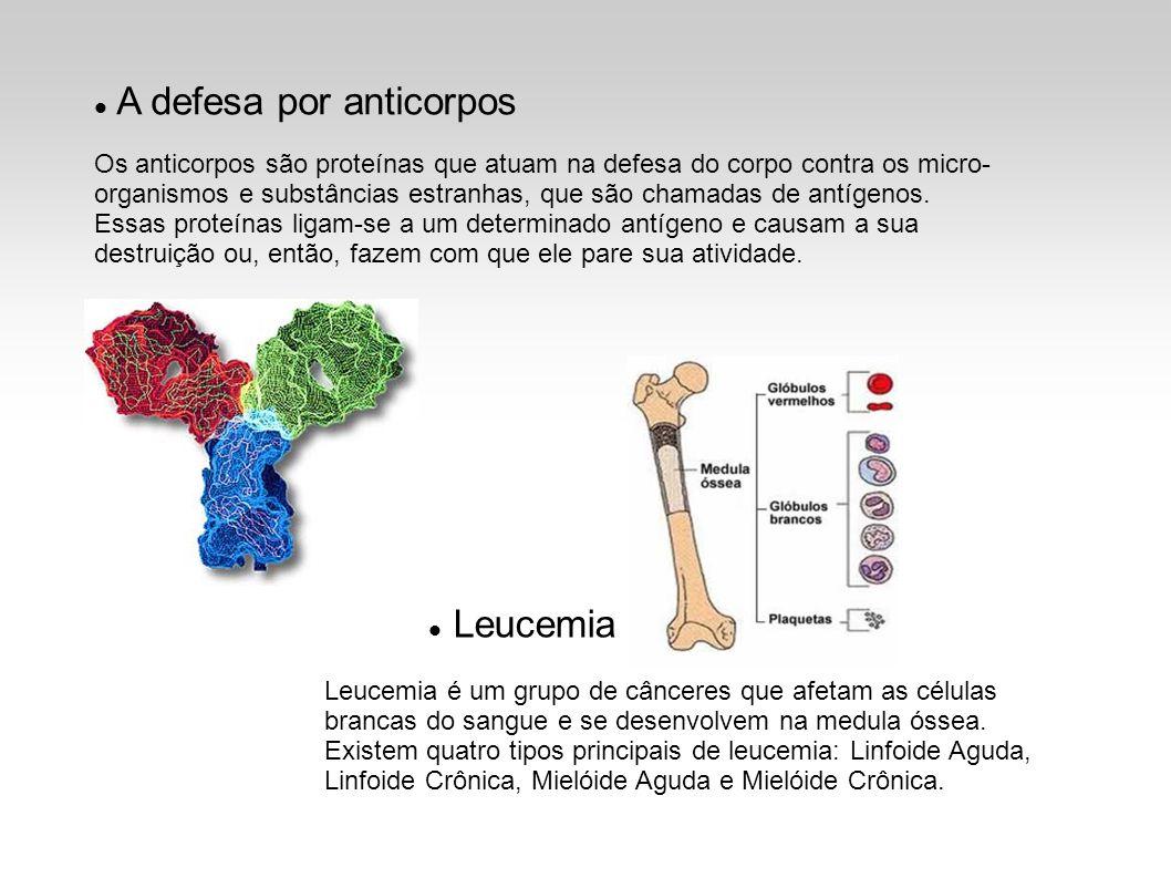 A defesa por anticorpos