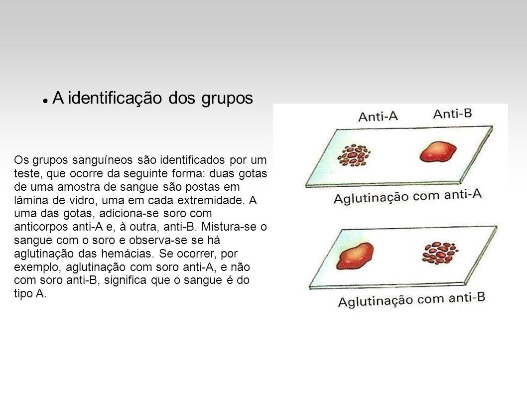 A identificação dos grupos