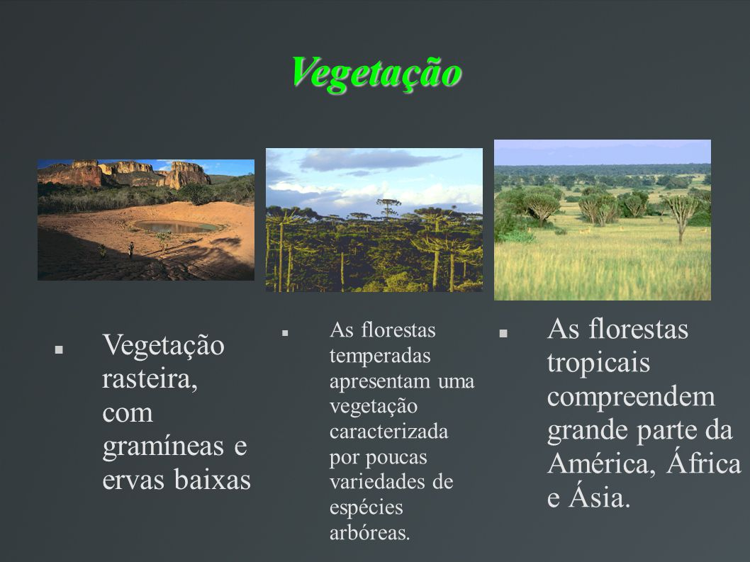 Vegetação As florestas tropicais compreendem grande parte da América, África e Ásia.