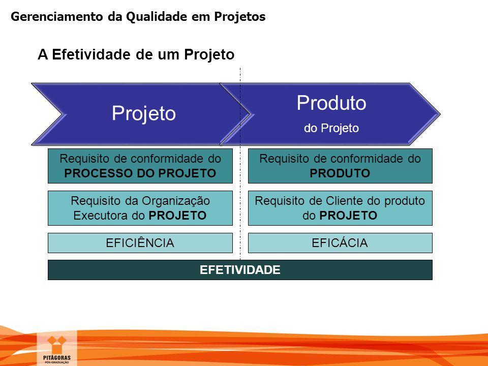 Produto Projeto A Efetividade de um Projeto do Projeto