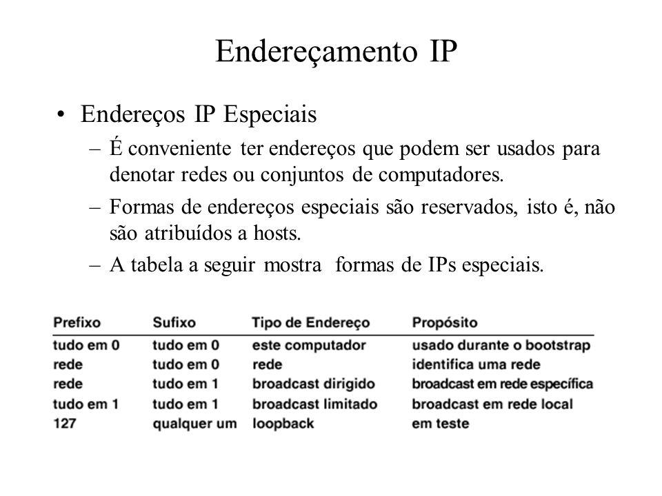 Endereçamento IP Endereços IP Especiais