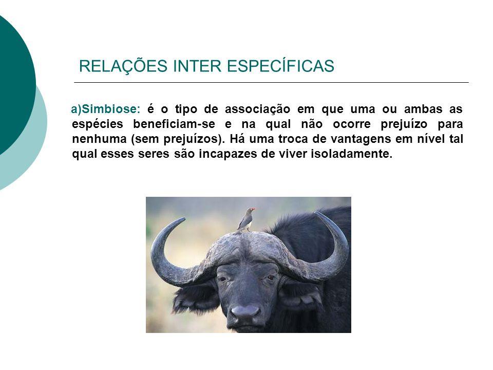 RELAÇÕES INTER ESPECÍFICAS