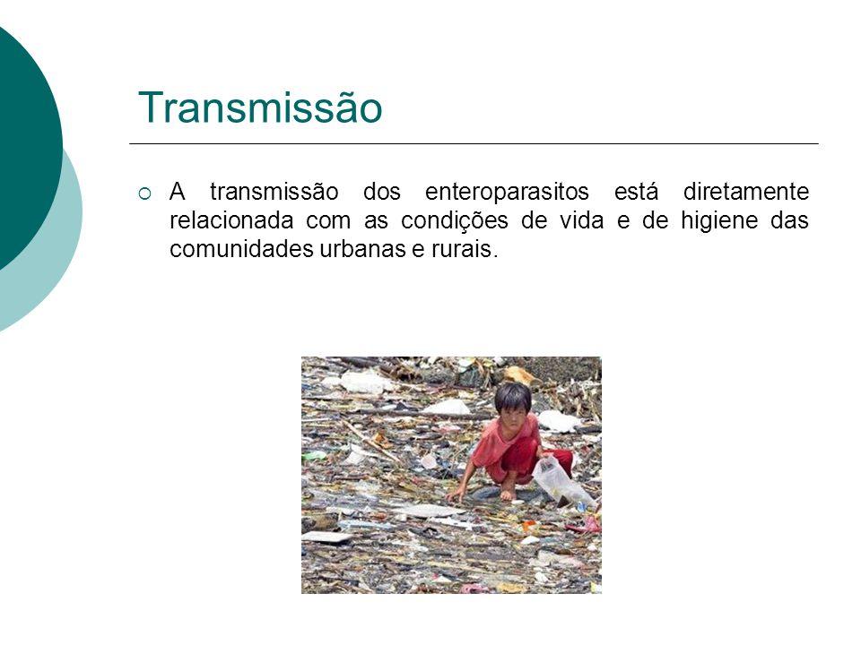 Transmissão A transmissão dos enteroparasitos está diretamente relacionada com as condições de vida e de higiene das comunidades urbanas e rurais.