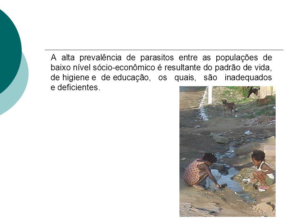 A alta prevalência de parasitos entre as populações de baixo nível sócio-econômico é resultante do padrão de vida, de higiene e de educação, os quais, são inadequados e deficientes.