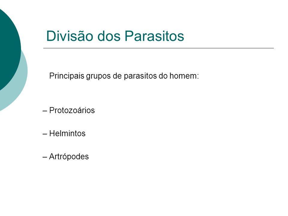 Divisão dos Parasitos Principais grupos de parasitos do homem:
