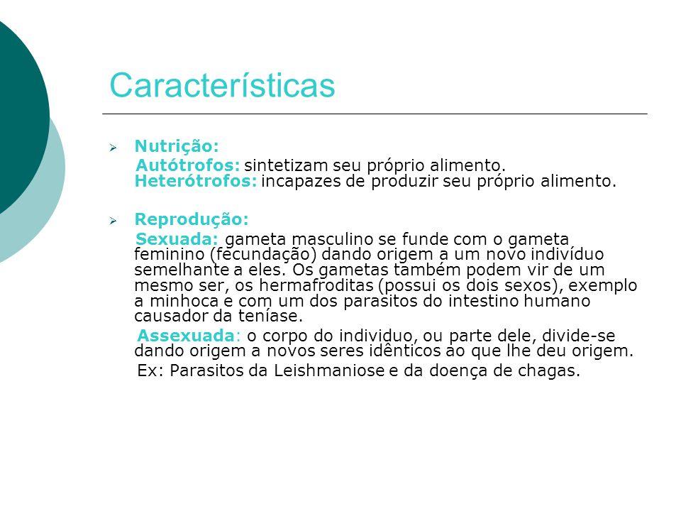 Características Nutrição: