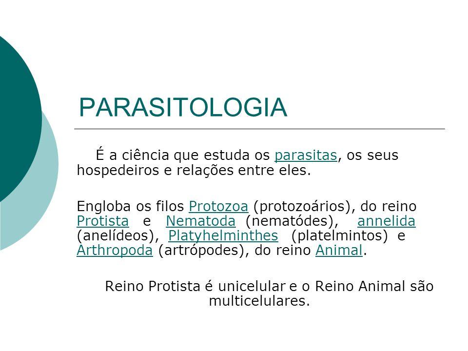 Reino Protista é unicelular e o Reino Animal são multicelulares.