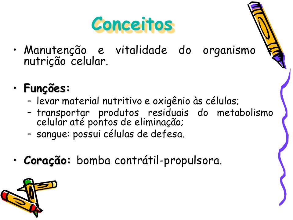 Conceitos Manutenção e vitalidade do organismo = nutrição celular.