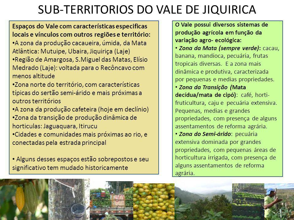 SUB-TERRITORIOS DO VALE DE JIQUIRICA