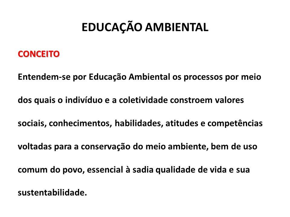 EDUCAÇÃO AMBIENTAL CONCEITO