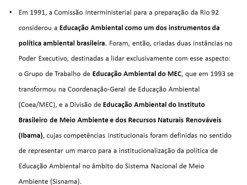 Em 1991, a Comissão Interministerial para a preparação da Rio 92 considerou a Educação Ambiental como um dos instrumentos da política ambiental brasileira.
