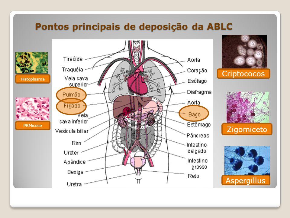 Pontos principais de deposição da ABLC