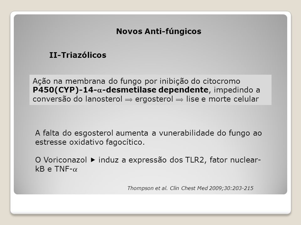 O Voriconazol  induz a expressão dos TLR2, fator nuclear-kB e TNF-