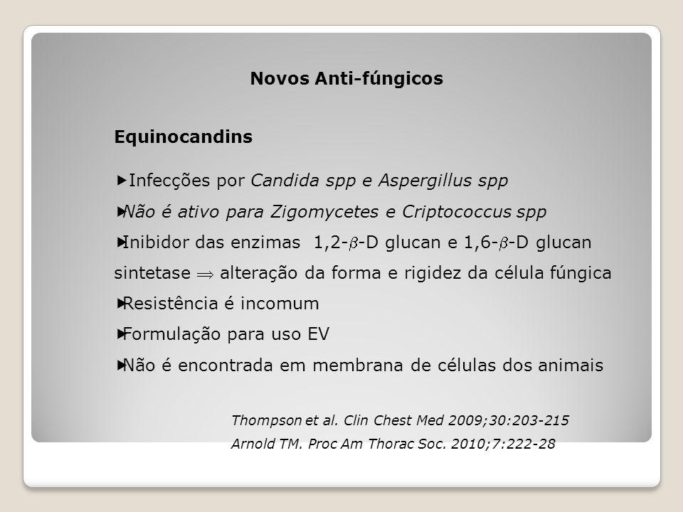 Infecções por Candida spp e Aspergillus spp