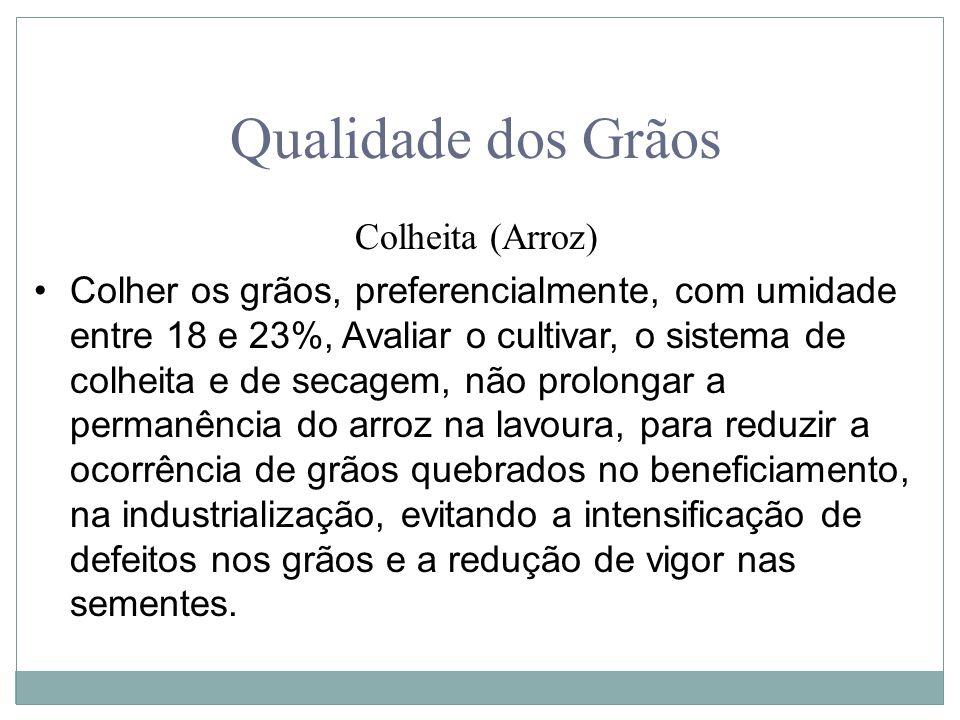 Qualidade dos Grãos Colheita (Arroz)