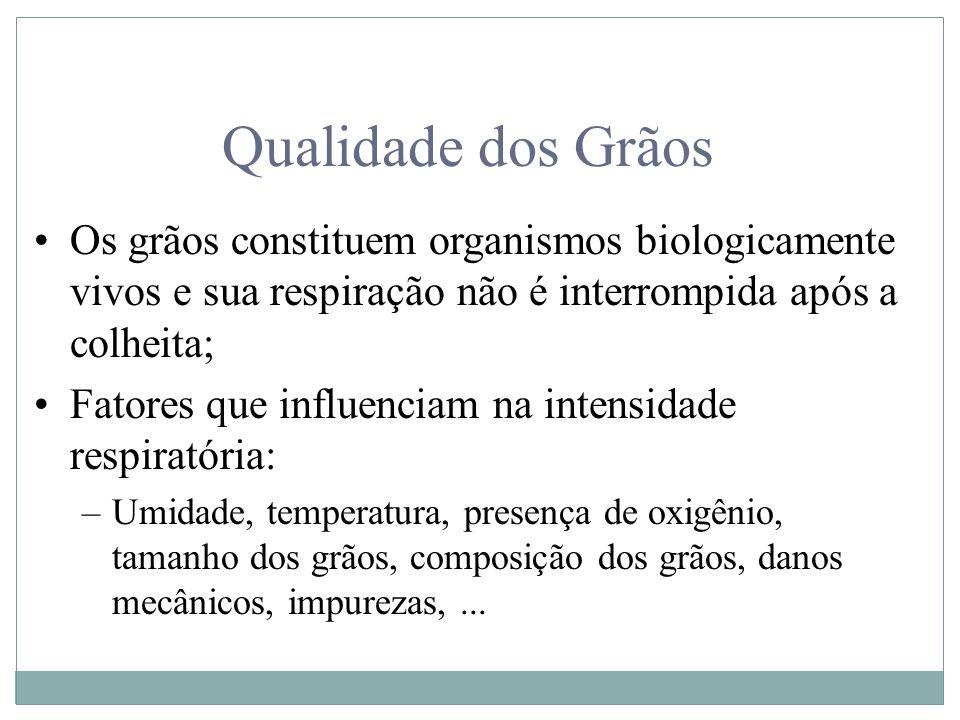 Qualidade dos Grãos Os grãos constituem organismos biologicamente vivos e sua respiração não é interrompida após a colheita;