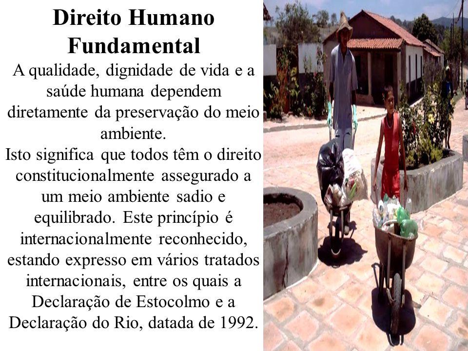 Direito Humano Fundamental