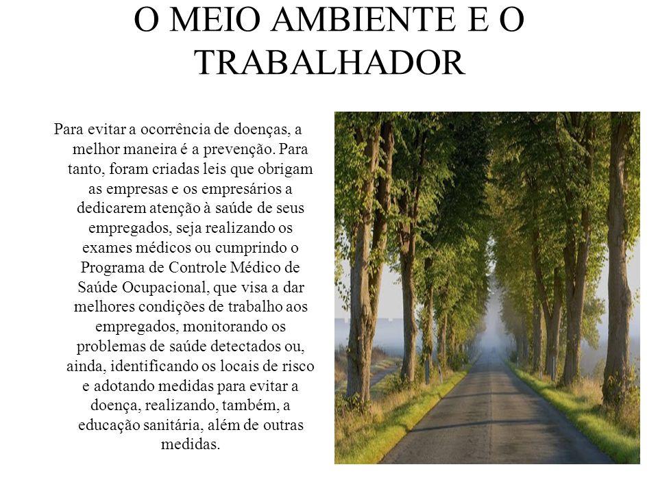 O MEIO AMBIENTE E O TRABALHADOR