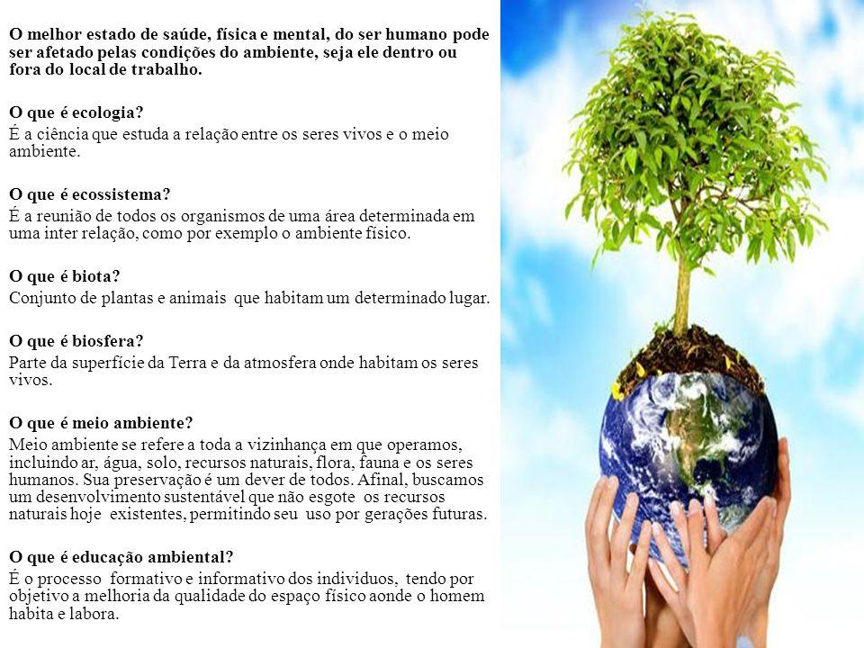 O melhor estado de saúde, física e mental, do ser humano pode ser afetado pelas condições do ambiente, seja ele dentro ou fora do local de trabalho.
