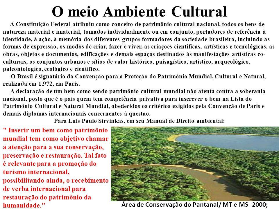 O meio Ambiente Cultural