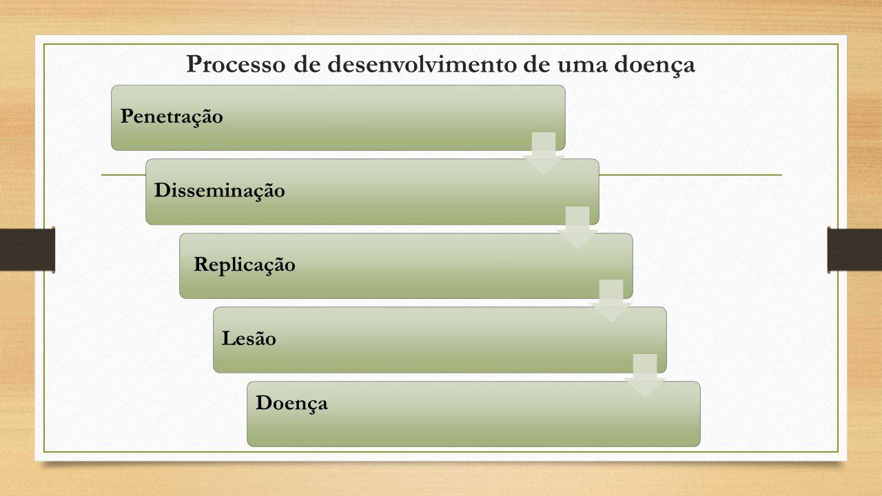 Processo de desenvolvimento de uma doença