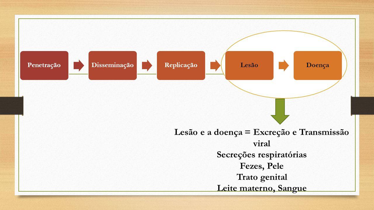 Lesão e a doença = Excreção e Transmissão viral