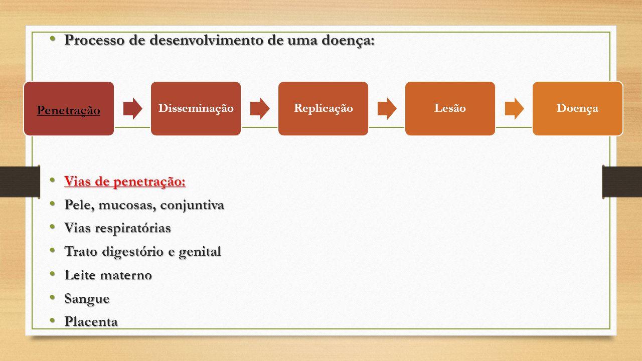 Processo de desenvolvimento de uma doença: