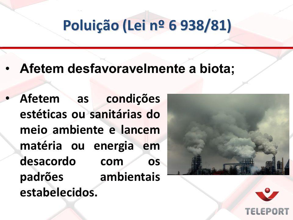 Poluição (Lei nº 6 938/81) Afetem desfavoravelmente a biota;