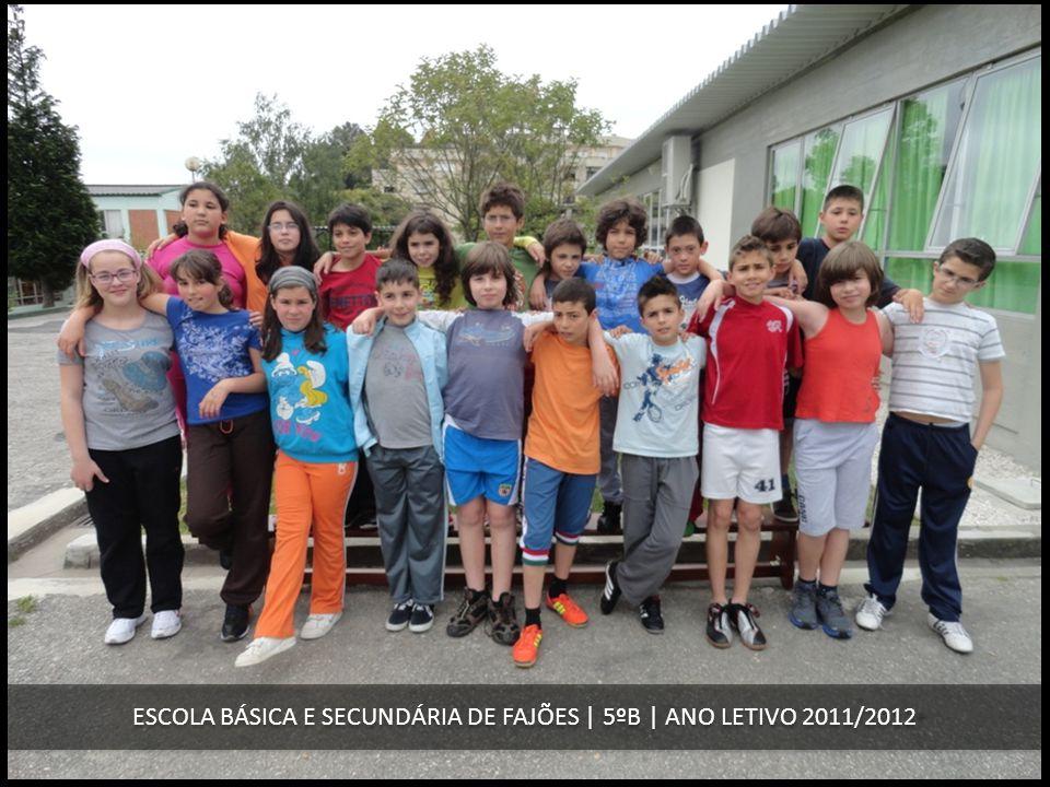 ESCOLA BÁSICA E SECUNDÁRIA DE FAJÕES | 5ºB | ANO LETIVO 2011/2012