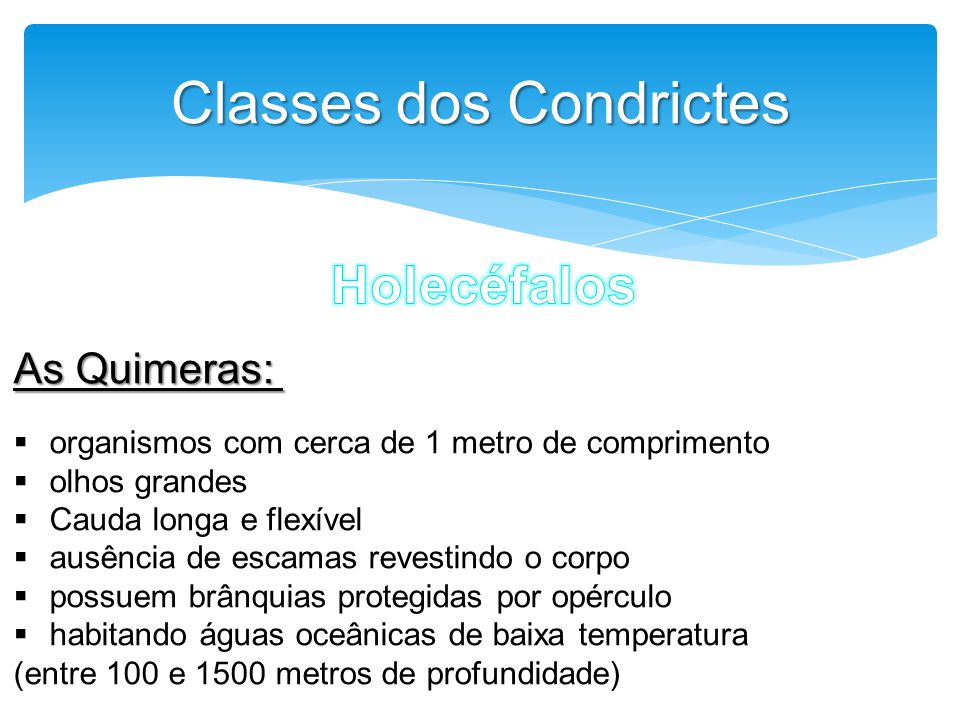Classes dos Condrictes