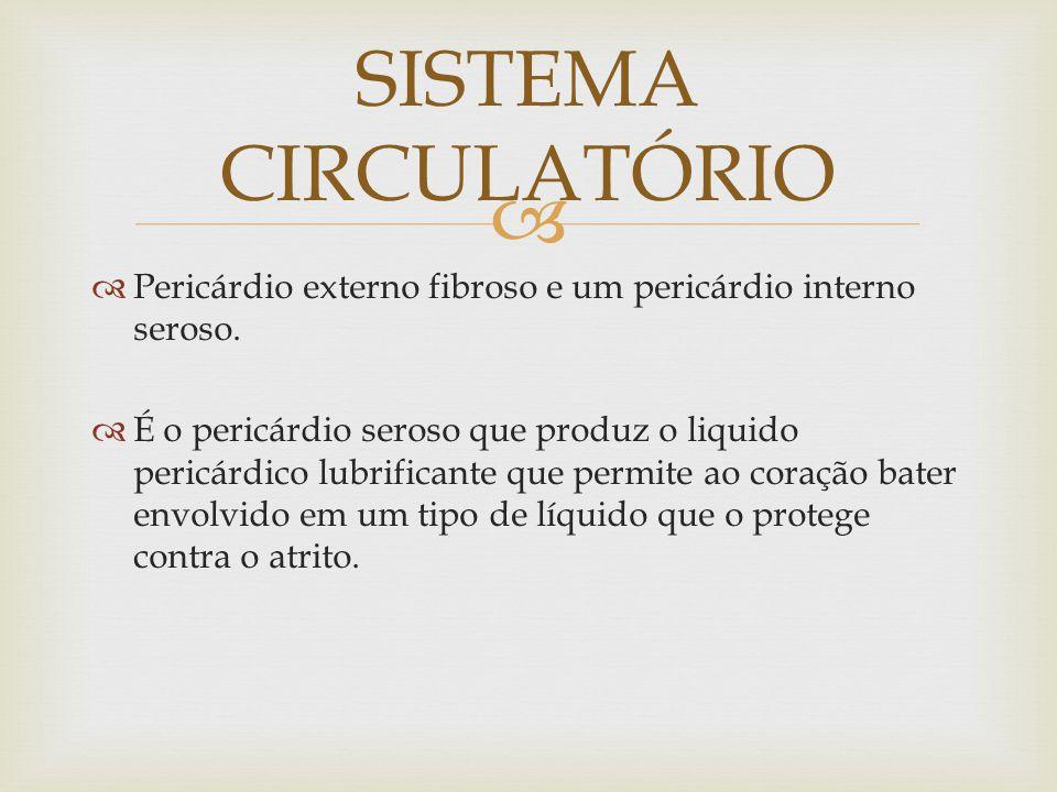SISTEMA CIRCULATÓRIO Pericárdio externo fibroso e um pericárdio interno seroso.