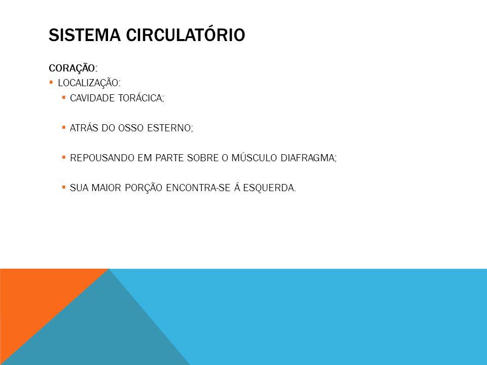 SISTEMA CIRCULATÓRIO CORAÇÃO: LOCALIZAÇÃO: CAVIDADE TORÁCICA;