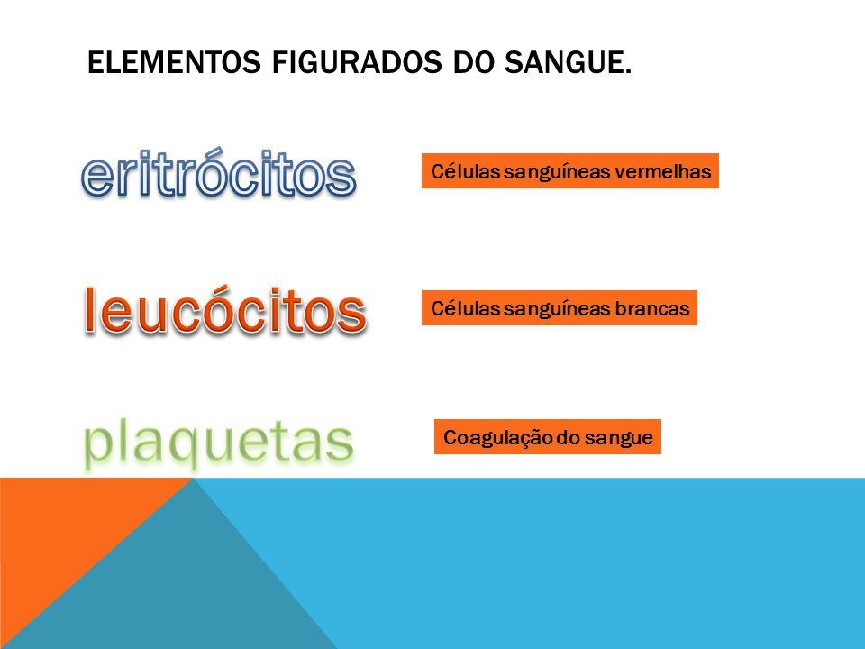 Elementos figurados do sangue.