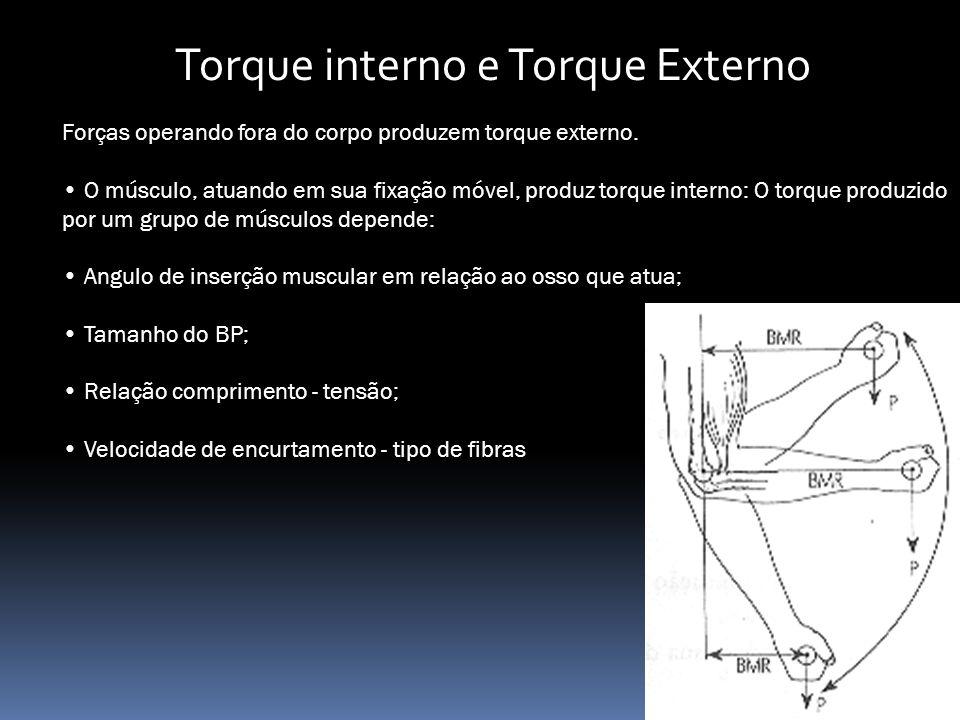 Torque interno e Torque Externo