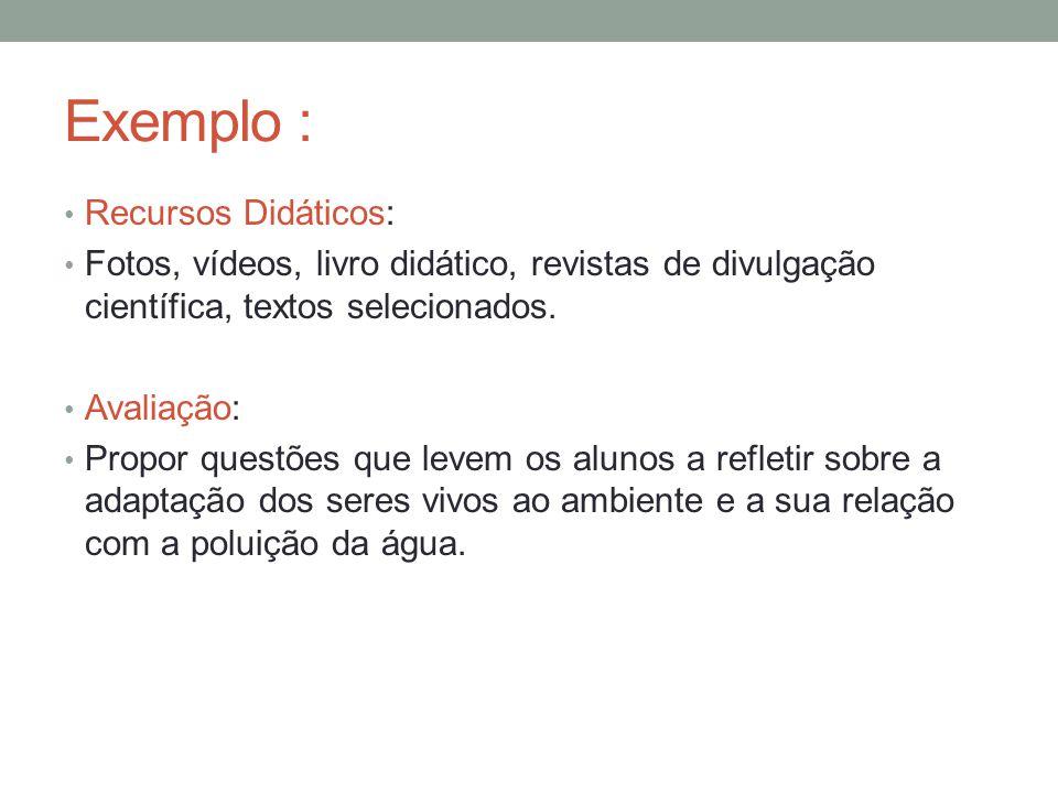Exemplo : Recursos Didáticos: