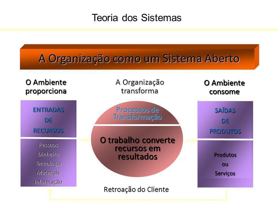 A Organização como um Sistema Aberto