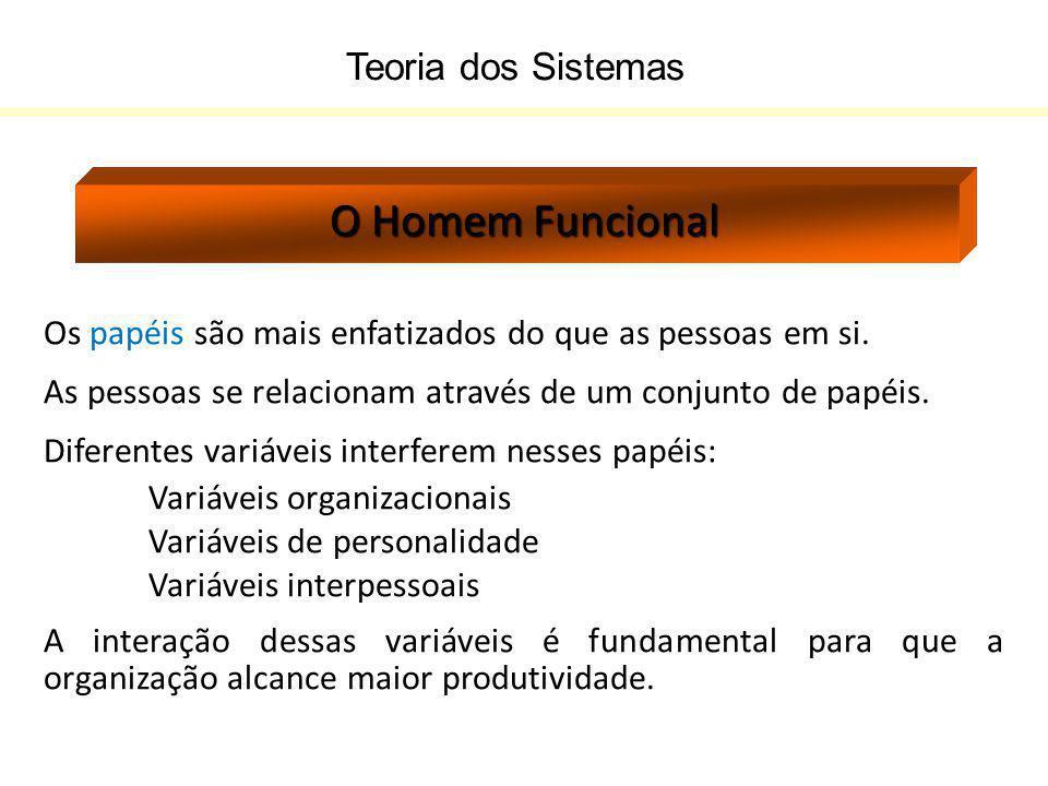 O Homem Funcional Teoria dos Sistemas