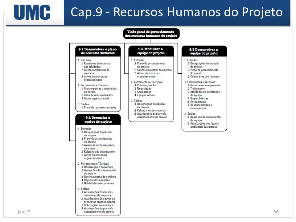 Cap.9 - Recursos Humanos do Projeto