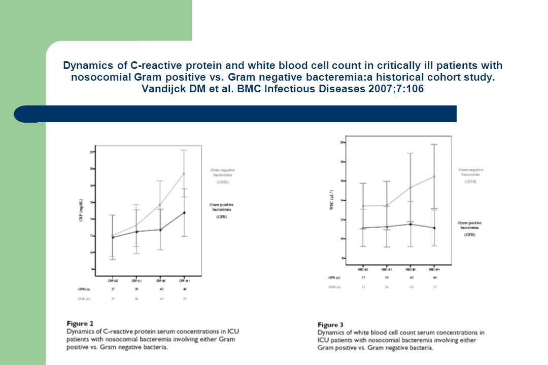 Dynamics of C-reactive protein and white blood cell count in critically ill patients with nosocomial Gram positive vs.