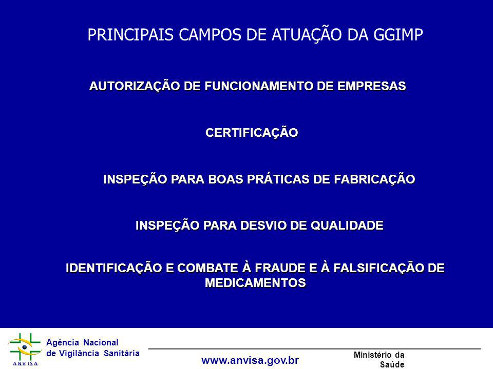 PRINCIPAIS CAMPOS DE ATUAÇÃO DA GGIMP