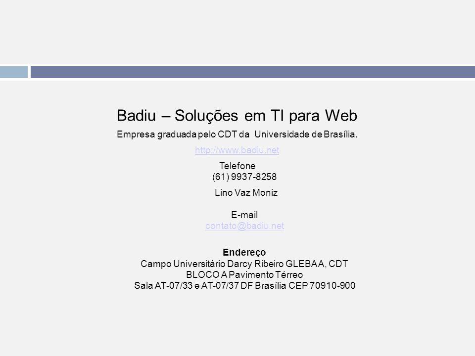 Badiu – Soluções em TI para Web