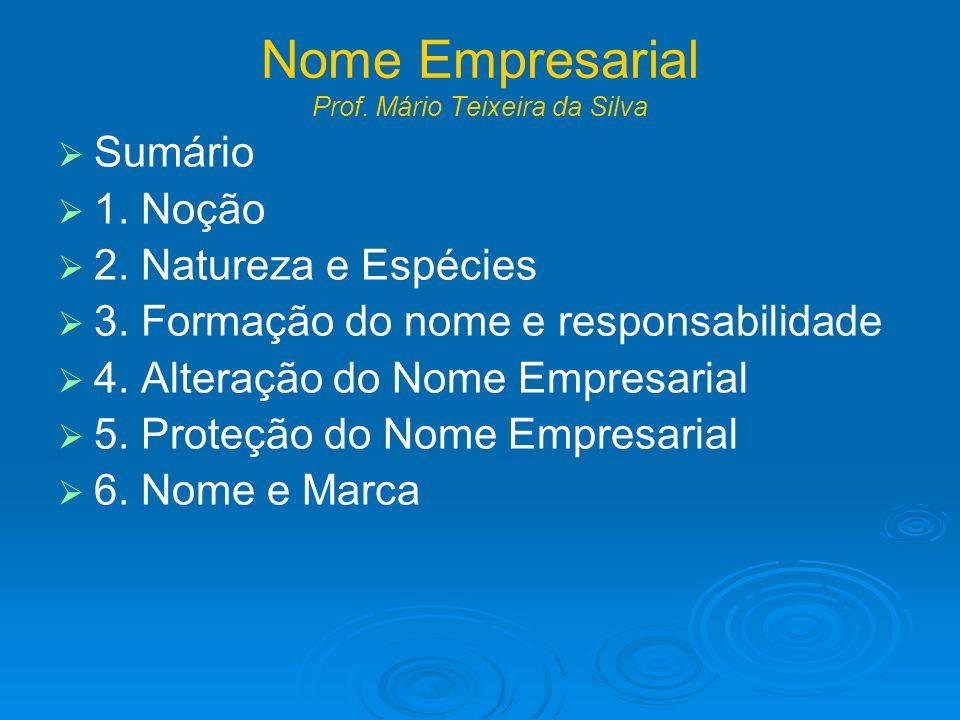 Nome Empresarial Prof. Mário Teixeira da Silva