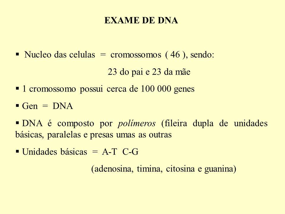 EXAME DE DNA Nucleo das celulas = cromossomos ( 46 ), sendo: 23 do pai e 23 da mãe. 1 cromossomo possui cerca de 100 000 genes.