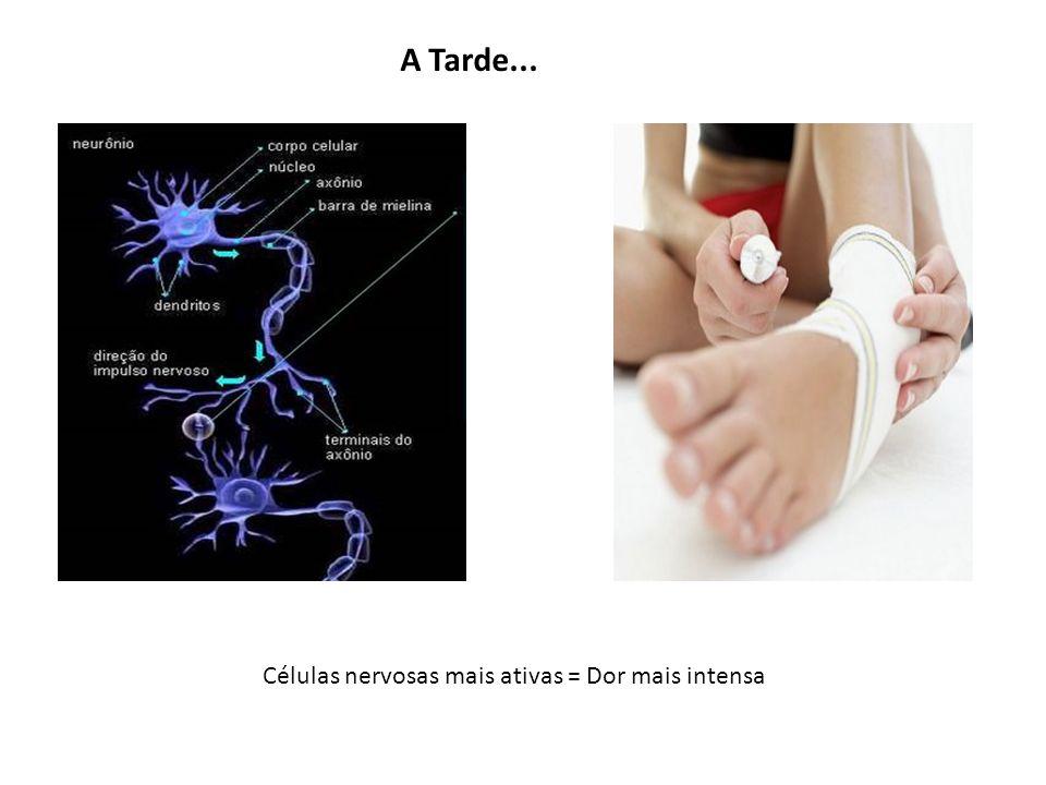 Células nervosas mais ativas = Dor mais intensa