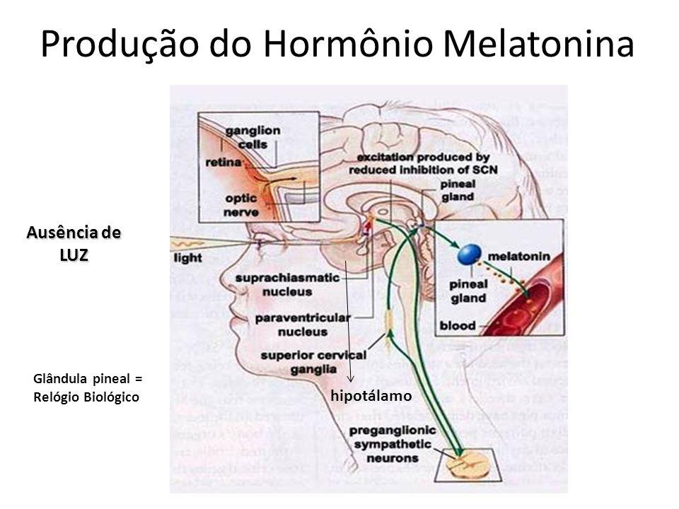 Produção do Hormônio Melatonina