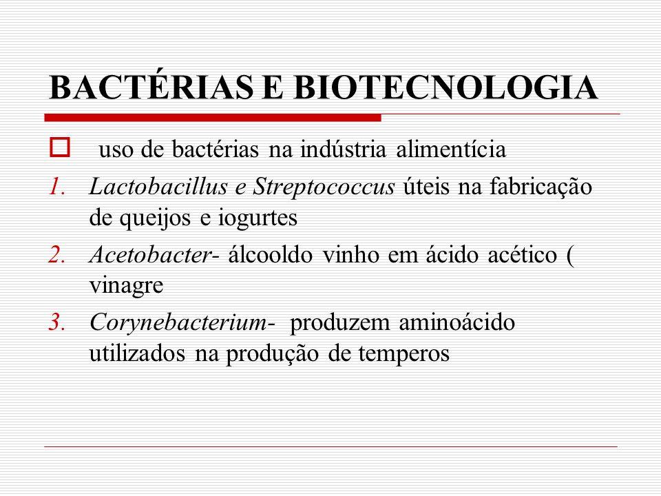 BACTÉRIAS E BIOTECNOLOGIA
